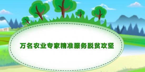 贵州万名农业专家怎么找?如何服务脱贫攻坚?看完这个视频你就懂了……