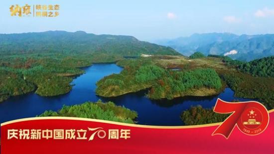 【飞越新贵州】纳雍:峡谷生态 珙桐之乡丨最美我的县