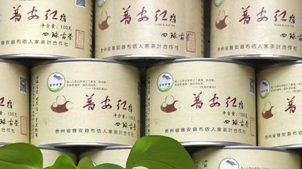 【贵州农村产业革命连连看】线上线下发力 普安红每年卖出上千万
