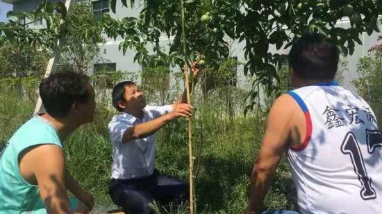 【贵州农村产业革命连连看】支部引领 产业花开