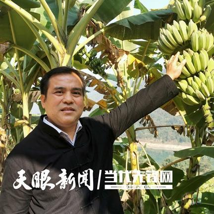 """【贵州农村产业革命连连看】建好""""金窝窝"""" 种出致富果"""