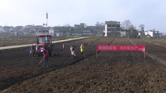 贵州毕节:疫情防控不松劲 春耕生产不误时