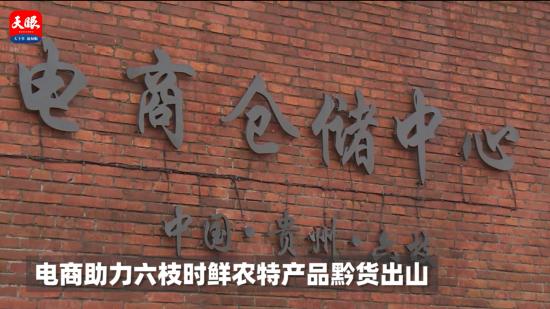 电商助力 六枝15万斤蕨菜销往全国