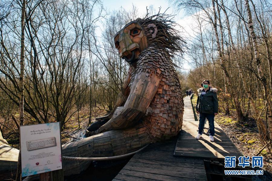 """国际森林日——守护森林的七个""""巨人"""""""